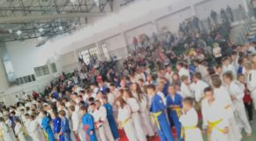 Kaštelanima 10.Judo kup Mokošice